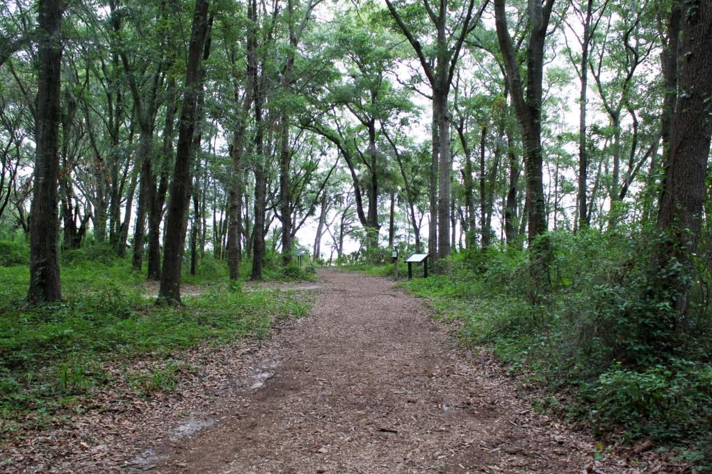 fhc path