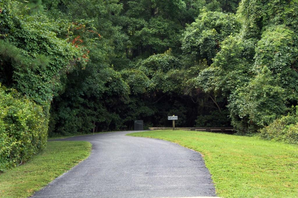 jc path