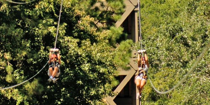 Zipline on Hilton Head Island