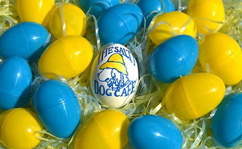 Salty Dog Easter Egg Hunt