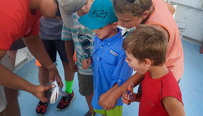 Family Friendly Captain Hook Shark Fishing on Hilton Head