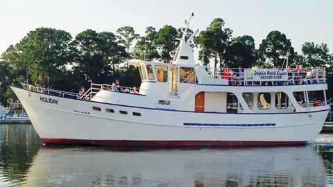 Captain Mark's Dolphin Watch Cruises