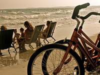 LowSea Bike, Beach & Baby Rentals | Coupon