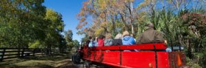 Forest Preserve Wagon Journey