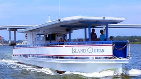 Dolphin Tours – Nature Cruises
