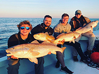 Out Of The Blue Fishing Charters | Coupon