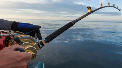Black Dog Fishing Charters